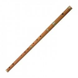 Flauta Irlandesa Tonalidad Re Menor