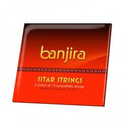 Cuerdas Sitar Banjira Chikari & Symp String Set