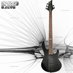 Bajo ESP B55 5 Cuerdas