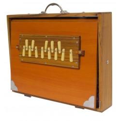 Shruti Box Sardar de Hombre controles secundarios dos