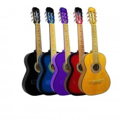 Guitarra clasica Breyer de estudio c funda