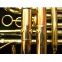 French Horn de 4 llaves doble, dorado con estuche