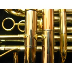 French Horn de 4 llaves doble, dorado con estuche