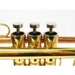 Trompeta Bb new piston Style con estuche de cuero2