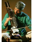 Instrumentos de cuerdas deIndia Sitares Tanpuras Swarmandal Dilruba Rabab Sarod Sarangi Swarmandal Tanpura Santoor